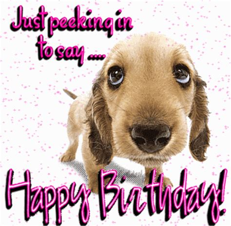 Happy Birthday Wishes Dogs Happy Birthday Funny Images Quotes Gifs And Wallpapers