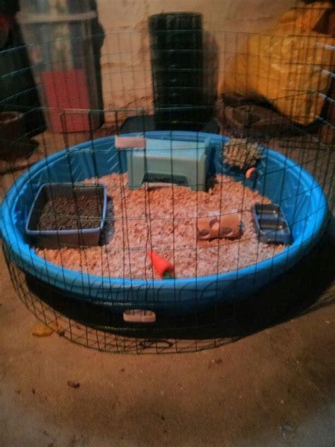 Animal Kiddie Pool Merah diy cheap rabbit cage kiddie pool rabbit fencing for gardens and velcro animals