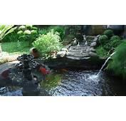 53 Indahnya Taman Rumah Membuat Betah Di Udara Segar Mata