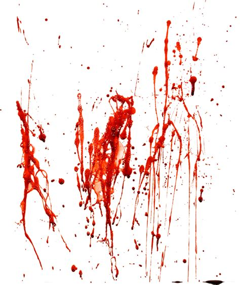 Blood Real In by Blood Png Www Pixshark Images Galleries With A Bite