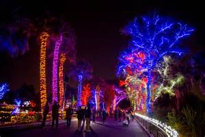 zoo lights zoolights zoo