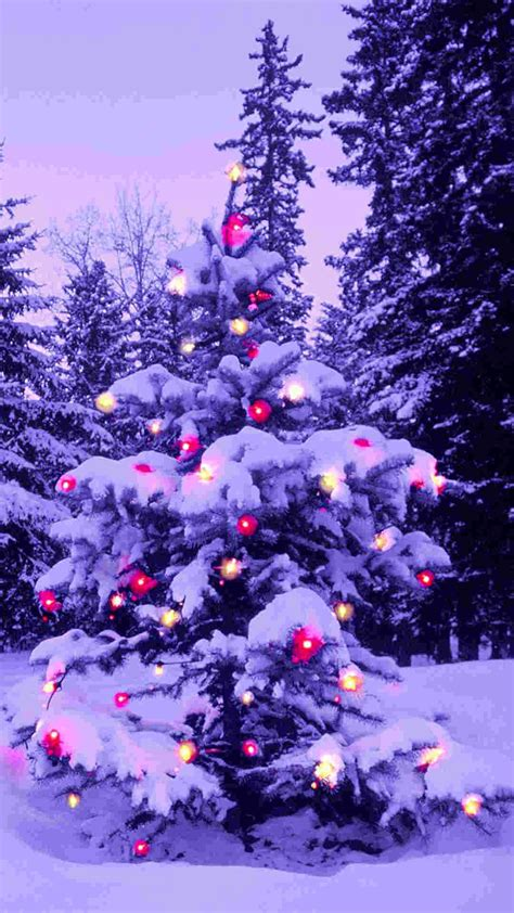 pink light 2014 christmas tree iphone 6 plus wallpaper