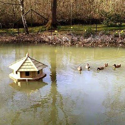 floating duck house plans hanike