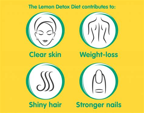 Can You Exercise While Lemon Detox Diet by The Lemon Detox The Lemon Detox Dietthe Lemon Detox