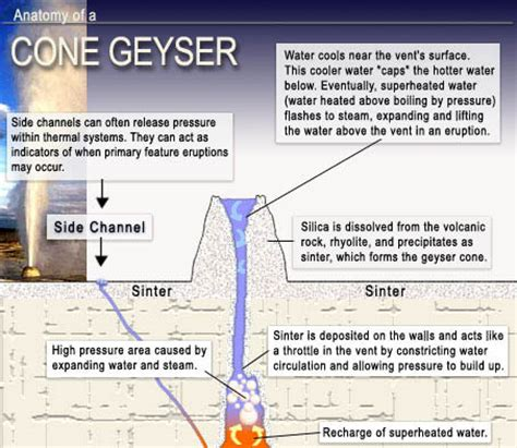 geyser diagram pop goes the geyser