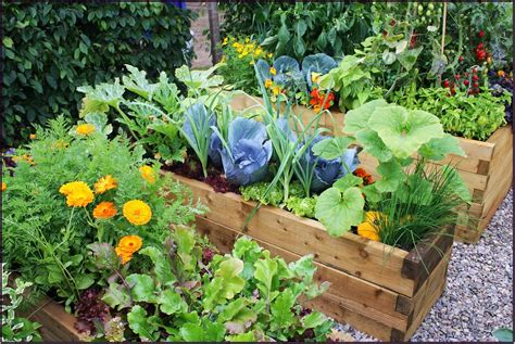 Easy Garden Bed Ideas Grab The Easy Garden Ideas For Autumn In Your Porch