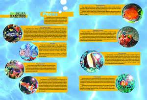 page design ideas 46 creative magazine spread design layout ideas for your