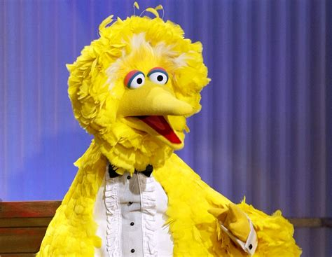 Book Review Dating Big Bird By Zigman by Big Bird And Big Media What Sesame On Hbo Means