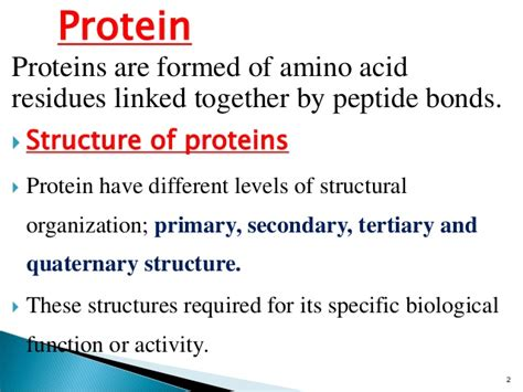 u protein level lec 2 level 3 nu structure of protein