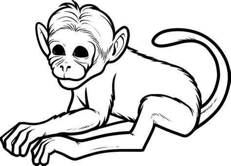 easy monkey coloring page free printable monkey coloring pages for kids