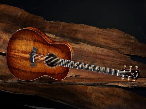 Coustic Audio Tweter Mobil Set acoustic guitars by series guitars