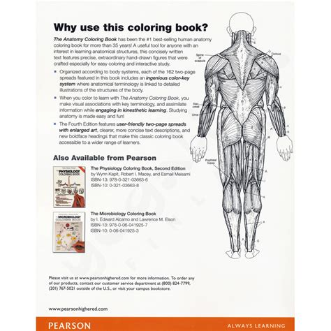 Anatomy Coloring Book Kapit The Anatomy Coloring