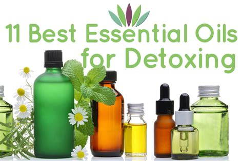 Essential Oils For Detoxing The by 11 Best Essential Oils For Detox Liveto110