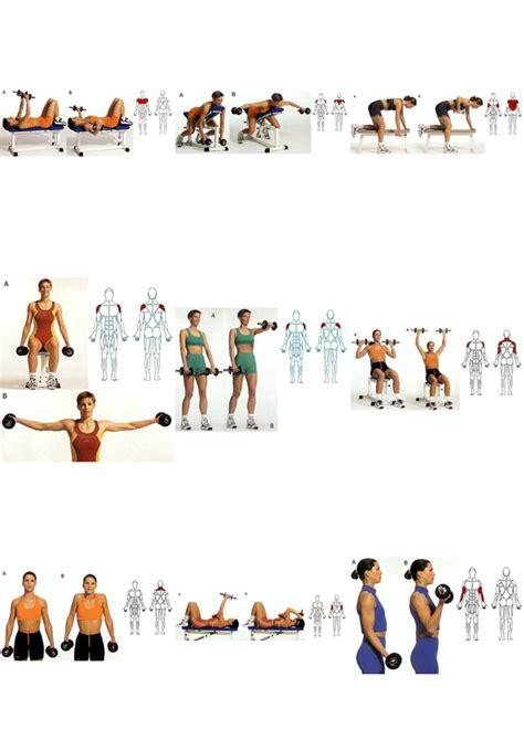 tabla de ejercicios con mancuernas 2015 para principiantes rutina para principiantes ejercicios con pesas share the