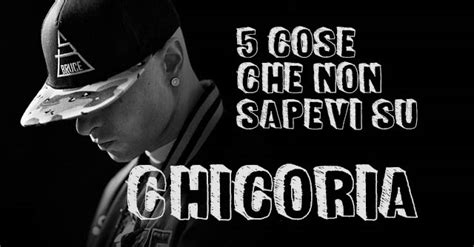 in the panchine truceklan 5 cose non sapevi su chicoria