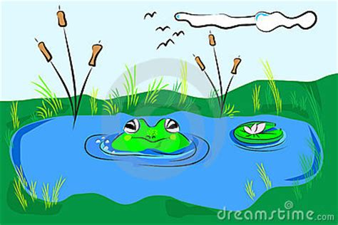 pond  frogs clipart clipground