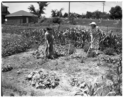 Victory Gardens Pa by Victory Garden Pictures To Pin On Pinsdaddy