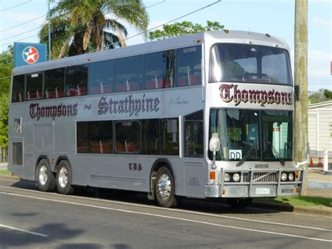bus australia photo gallery thompsons bus service