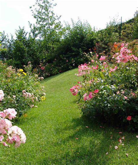 giardini paghera colori sgargianti per il piccolo giardino in montagna