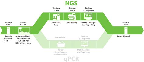 The Templates For Next Generation Sequencing Are Flash Card by Products Vela Diagnostics Ngs And Pcr Solutions