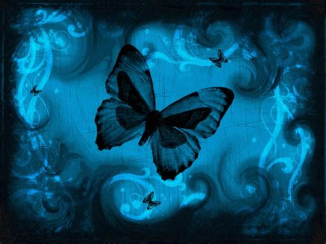 blue wallpaper with butterflies news butterfly blue butterfly wallpaper