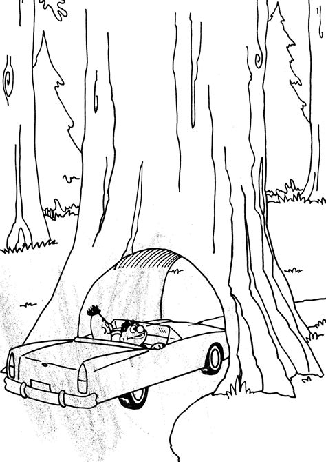 coloring page of redwood tree redwoodforest