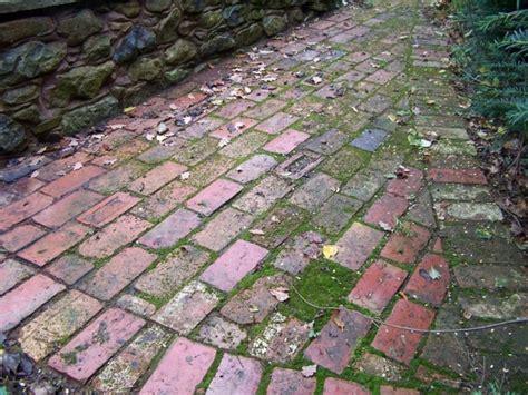 Patio Flooring Paving Copper Beech Garden Design Hereford
