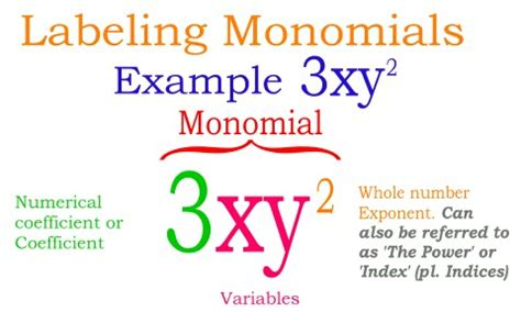multiplying and dividing monomials lessons tes teach