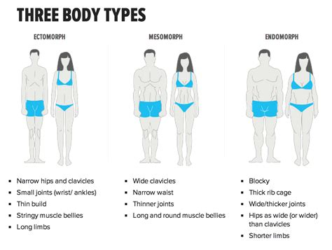 4 weight loss types what type of type is guts berserk