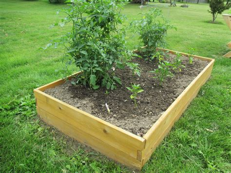 raised garden bed kit 3 x6
