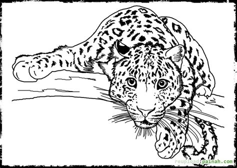 Animal Coloring Page by Detailed Animal Coloring Pages Bestofcoloring