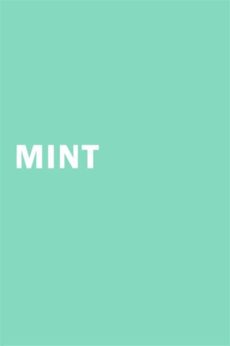 what color is mint just mint design color mint color mint green