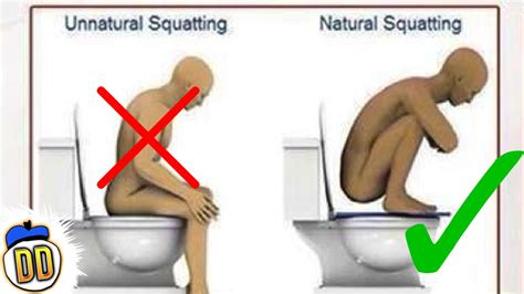 is it illegal to use the wrong bathroom 8 everyday things you ve been doing wrong youtube