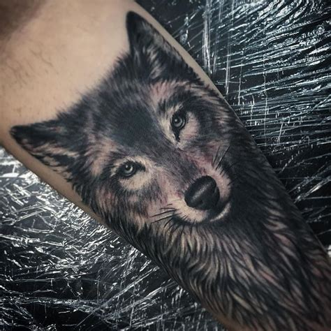 black and grey wolf tattoo black n grey wolf on right forearm