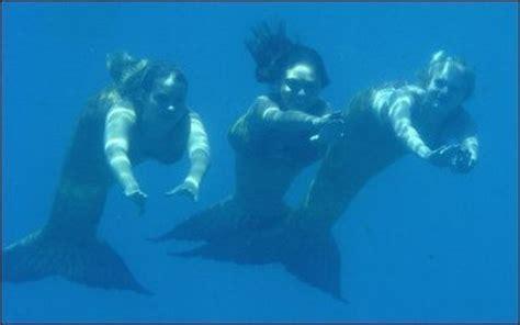 mermaids rikki cleo i this h20 mermaid cleo rikki