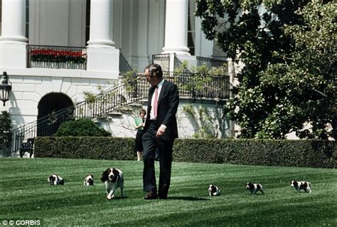 presidential dogs presidential pets adorable new book chronicles the pets of america s leaders from