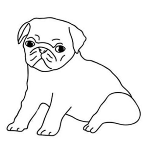 pug color bulldog pug coloring page color