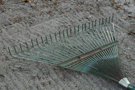Landscape Rake Wiki What Are The Essential Tools That Every Gardener Should