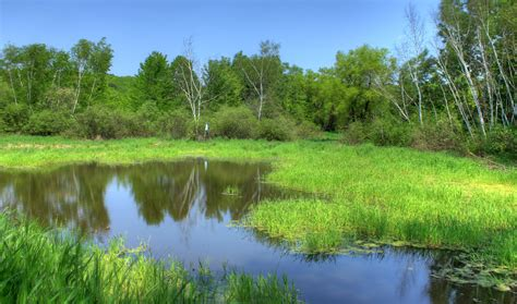free stock photo of landscape and pond at hoffman hills state recreation area wisconsin