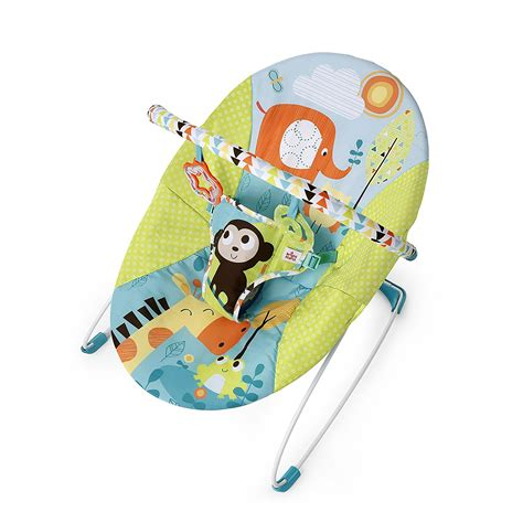 Bright Starts Meadow Blossoms Bouncer baby bouncer vibrating bright starts pattern pals