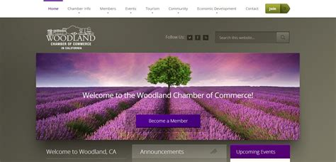 website design woodland ca