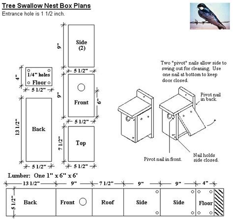 swallow house plans build tree swallow house