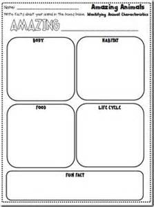 all about non fiction on pinterest informational writing