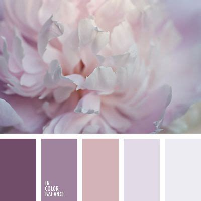 purple color inspiration and colors on
