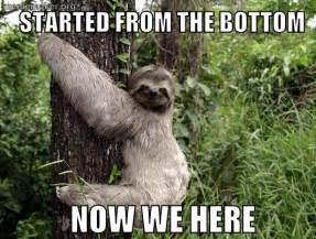 Sloth Meme Pictures - sloth 171 meme maker make a meme online