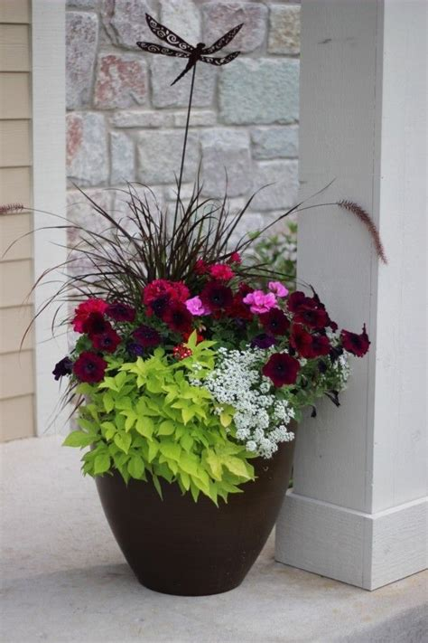 Flower Ideas For Planters by 25 Best Ideas About Flower Planters On