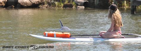 public boat r new smyrna beach paddle board new smyrna beach lesson rentals eco tours