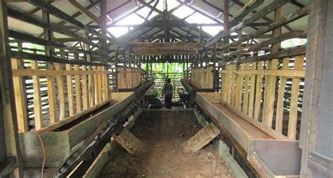 Jual Starbio Plus Di Medan kandang ternak kambing dan domba