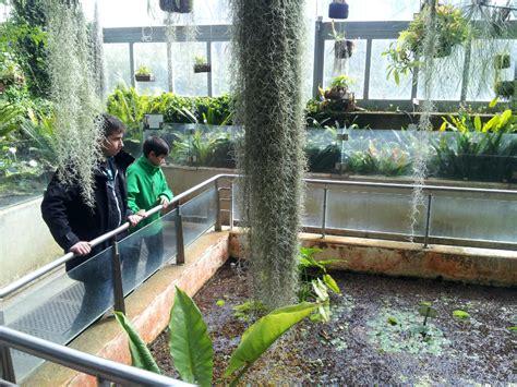 imagenes de jardines botánicos el jard 237 n bot 225 nico de madrid con los ni 241 os