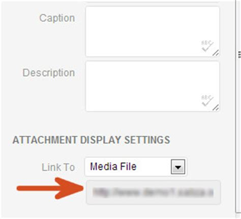 raw file format audio how to add mp3 audio files in wordpress